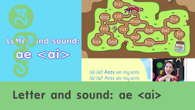 Letter and sound: ae <ai>